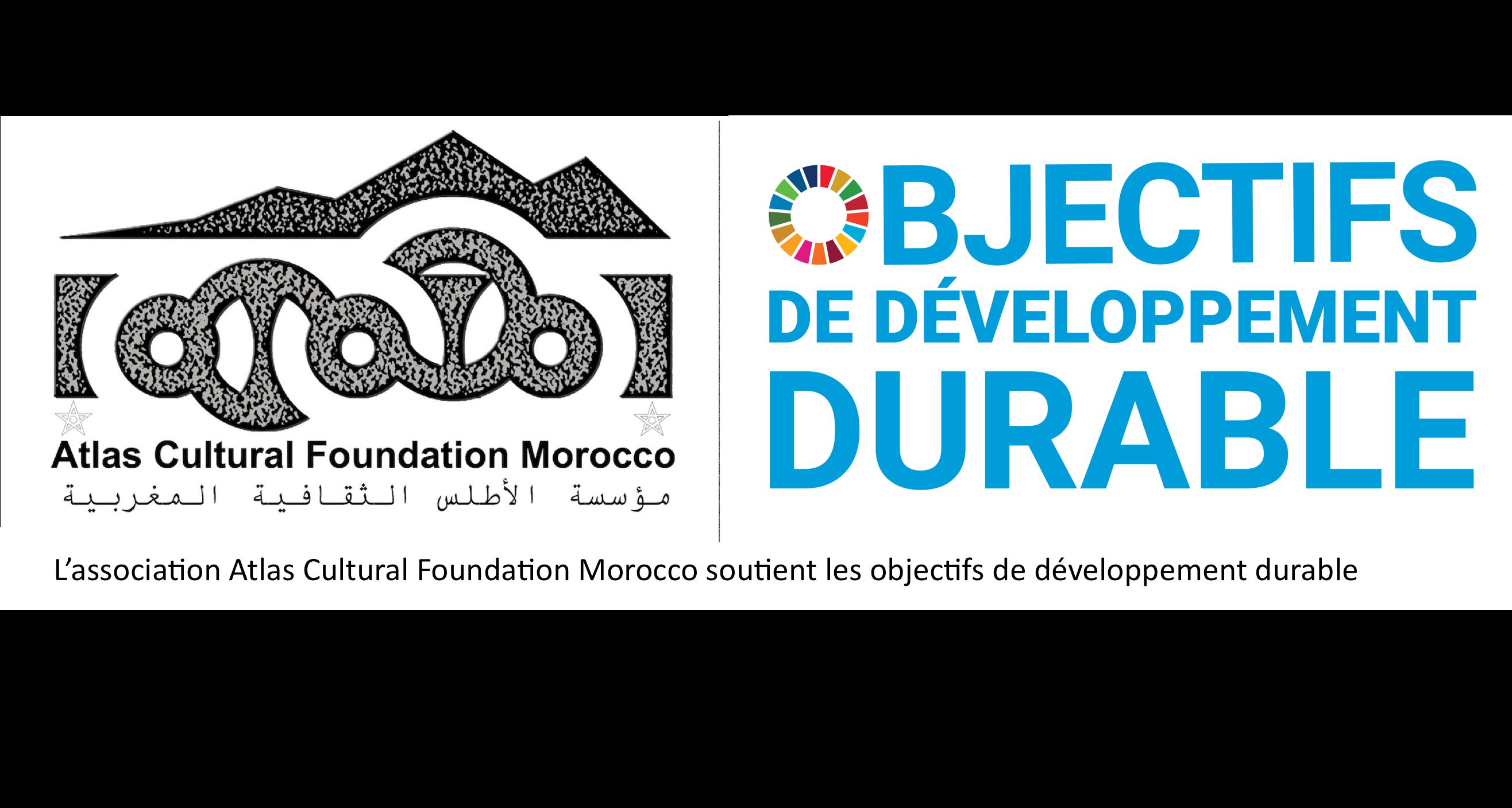 ACFM_SDG_logo